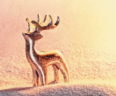photo-christmas-reindeer-snow-object