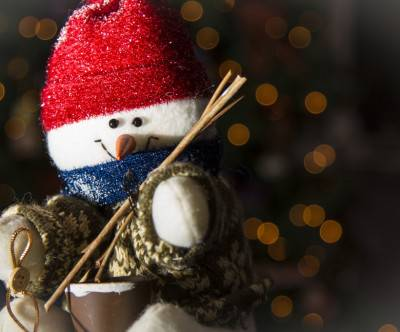 photo-christmas-snowman-stuffed-animals