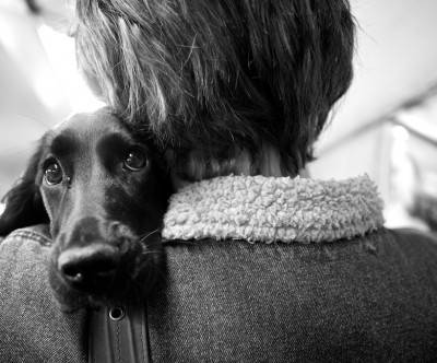 photo-dog-monochrome-hug-woman