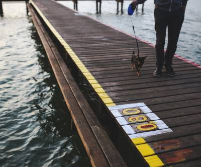 photo-dog-walk-pier-evening