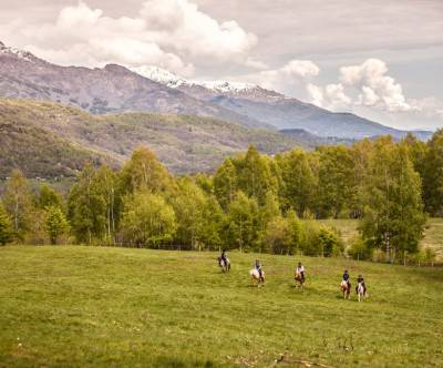 photo-horse-trekking-landscape-animal