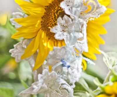 photo-sunflower-garter-lace