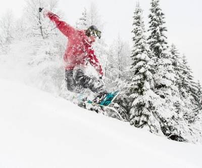 photo-snowboard-boy-jump-tree
