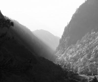photo-forest-monochrome-mountain-sun-light
