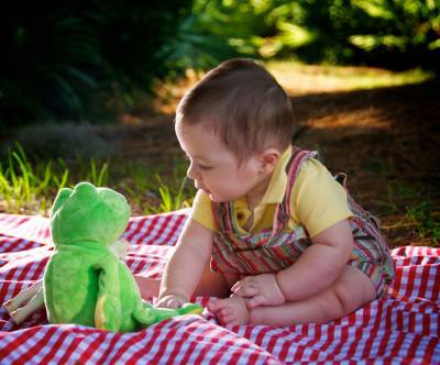 photo-baby-picnic-stuffed-animals